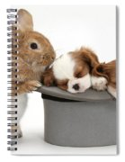 Rabbit And Spaniel Pups Spiral Notebook