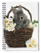 Rabbit In A Basket With Flowers Spiral Notebook