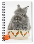 Rabbit In A Food Bowl With Carrot Spiral Notebook