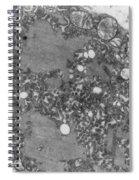 Rabies Virus Spiral Notebook