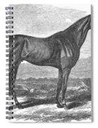 Racehorse, 1867 Spiral Notebook