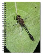 Racket-tailed Emerald Dragonfly Spiral Notebook