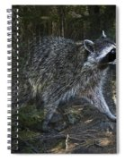 Racoon Emerging From The Woods Spiral Notebook