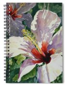 Radiant Light - Hibiscus Spiral Notebook