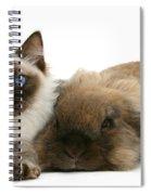 Ragdoll Kitten And Lionhead Rabbit Spiral Notebook