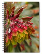Rain Drenched II Spiral Notebook