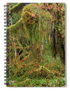 Rain Forest Crocodile Spiral Notebook