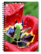Rain Kissed Spiral Notebook