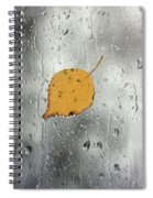 Rain On Window With Leaf Spiral Notebook