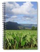 Rain Over A Hanalei Taro Field Spiral Notebook
