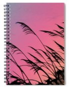Rainbow Batik Sea Grass Gradient Silhouette Spiral Notebook