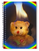 Rainbow Bear Spiral Notebook