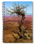 Rainbow Canyon Spiral Notebook