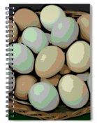 Rainbow Eggs Spiral Notebook