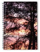 Rainbow Forest Spiral Notebook