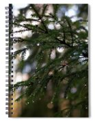 Raindrops On The Spruce Twig Spiral Notebook