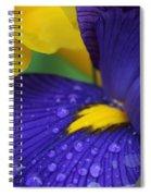 Raindrops Purple Dutch Iris Flower Spiral Notebook