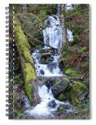 Rainforest Waterfall Spiral Notebook