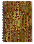 Raining Coins And Juwels Spiral Notebook