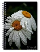 Rainy Day Daisies Spiral Notebook