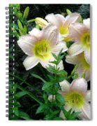 Rainy Day Day Lilies Spiral Notebook