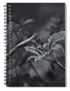 Rainy Day Lily Spiral Notebook