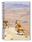 Ramon Crater Negev Israel Spiral Notebook
