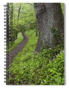 Ramsons By Path In Woods, County Louth Spiral Notebook