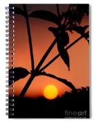 Raphael Sunset 1 Spiral Notebook