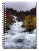 Rapid Waters Spiral Notebook