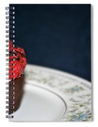 Raspberry Mascarpone Spiral Notebook