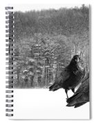Ravens By A Woods Spiral Notebook