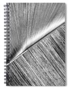 Diagonal. Black And White Spiral Notebook