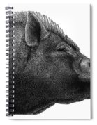 Razorback Spiral Notebook