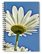 Reach For The Blue Sky Spiral Notebook