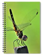 Ready For Departure Spiral Notebook
