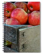 Ready To Eat Spiral Notebook