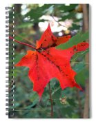 Ready To Fall Spiral Notebook