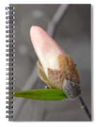 Ready To Unfold Spiral Notebook