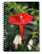 Real Red Spiral Notebook
