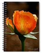 Recent Raindrops Spiral Notebook