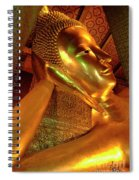 Reclining Buddha 2 Spiral Notebook