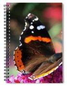 Red Admiral Spiral Notebook