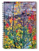 Red And Gold In Quarry At Elephant Rocks State Park Spiral Notebook