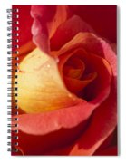 Red And Orange 2 Spiral Notebook