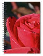 Red And Ready For Review Spiral Notebook