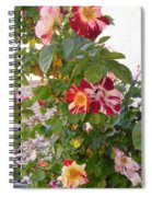 Red And White Roses 3 Spiral Notebook
