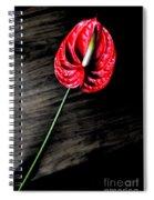 Red Anthrium Spiral Notebook