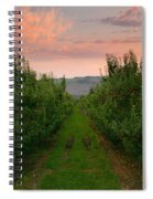 Red Apple Sunset Spiral Notebook