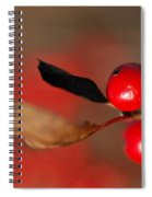 Red As A Winterberry Spiral Notebook